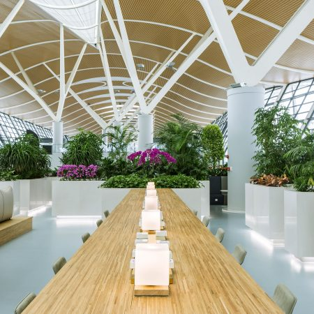 Pudong-Airport_Sky-jungle_Shanghai_Stefano-Boeri-Architetti-1